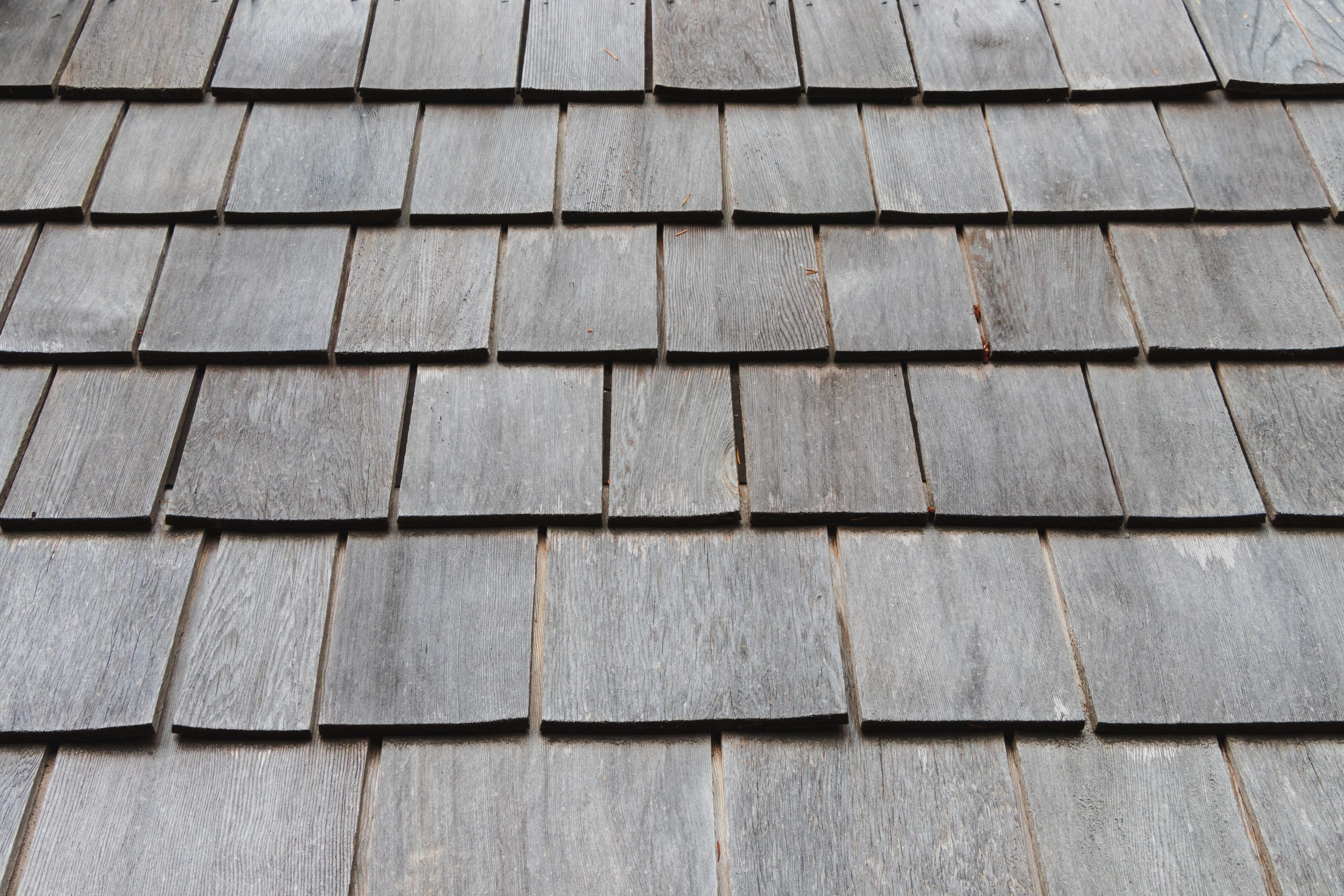 The image shows some grey roof tiles.